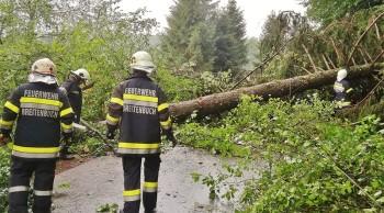 Stark Regenfälle und Sturmböen in der Marktgemeinde Kirchbach-Zerlach